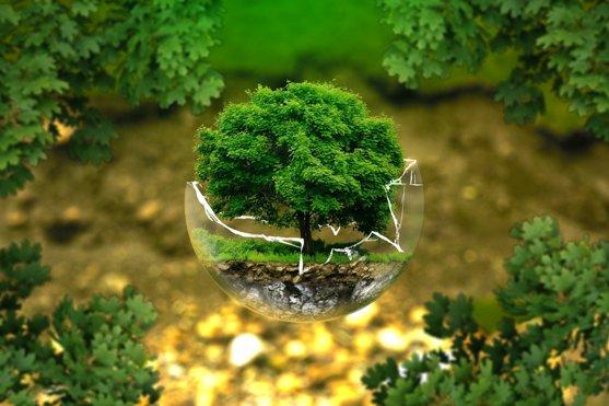 comment réduire l'impact environnemental de son entreprise en externalisant son community management ?