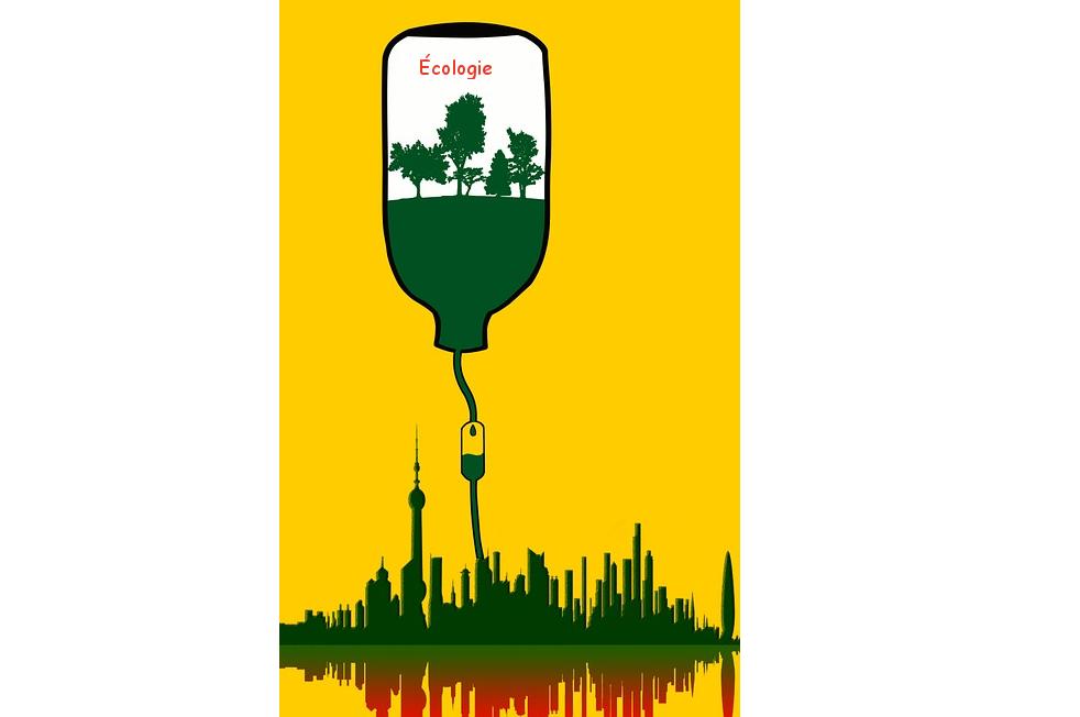 Télétravail - Pour une responsabilité environnementale des entreprises