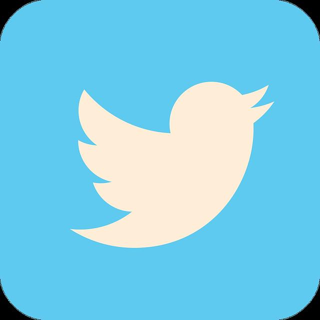 Faut-il intégrer Twitter dans votre marketing digital ?
